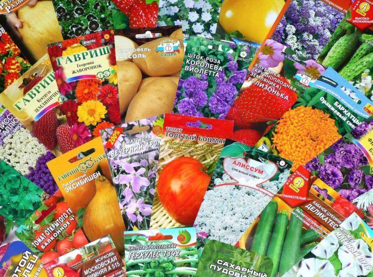 Приобретение семян овощей в Украине