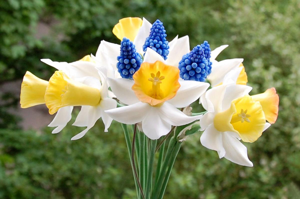 букет из цветов нарциссов